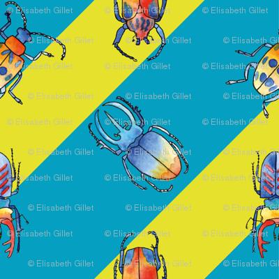 Wonderful Beetles
