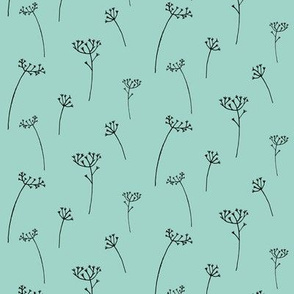 Cow Parsley Sprig