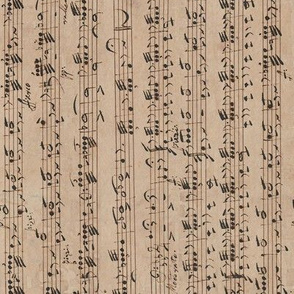 continuous handwritten sheet music - Rossini / Dragonetti