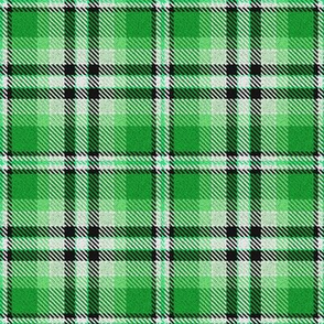 Green Black and White Plaid