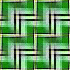 Green Yellow Black and White Plaid