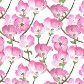 Pinkwatercolordogwood_shop_thumb