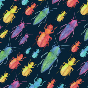InsectsMariaPaula