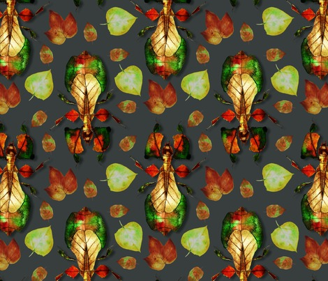 Rrwhimsical_walking_leaf_insect_contest145010preview