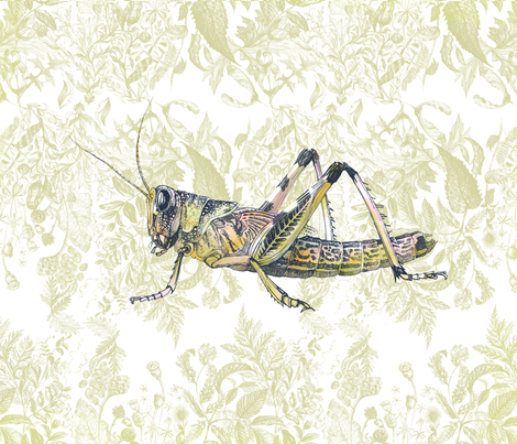 Grasshopper fabric by huard_delphine on Spoonflower - custom fabric