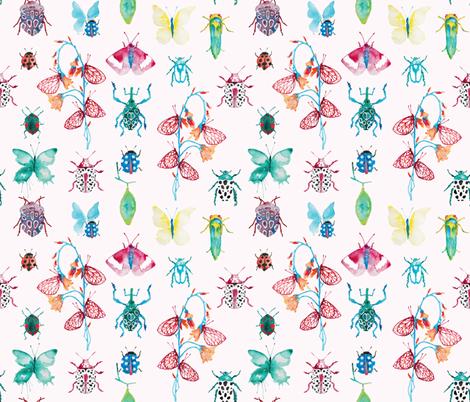 Cabinet de curiosités fabric by appaloosa_designs on Spoonflower - custom fabric