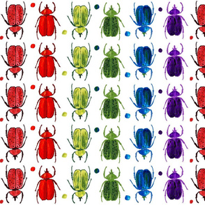 Shadowbox Rainbow Beetles