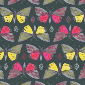 Silky butterflies
