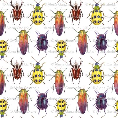 watercolor bright beetles