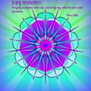 Lotus Star4