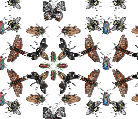 Insect kaleidoscope fabric by josefmcfadden on Spoonflower - custom fabric