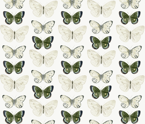 butterflys fabric by kristy_stafford on Spoonflower - custom fabric