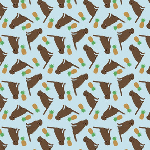 Tiny Chocolate Labrador Retrievers - pineapples