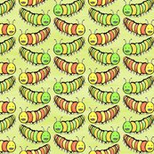 Rrrcreepy_crawly_coloured_caterpillars_by_rhonda_w_shop_thumb