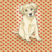 Rrrrsitting_labrador_retriever_puppy_for_pillow_rev_shop_thumb