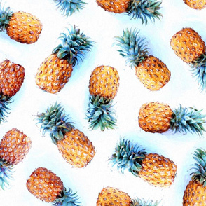 Painted Pineapples on White
