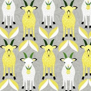 goat02
