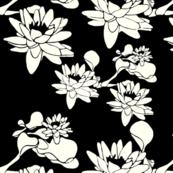 Water Lily print #FFFFF2