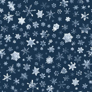 late evening sky snowflakes - large