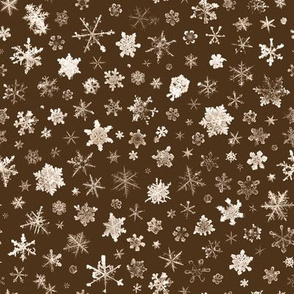 photographic snowflakes on chocolate brown - large