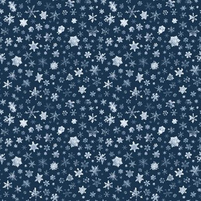 late evening sky snowflakes - small