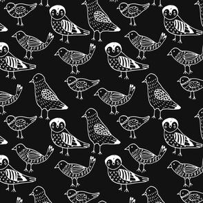 White birds on black