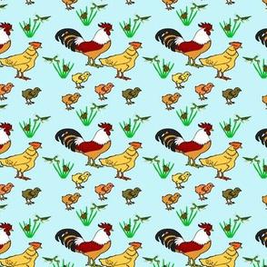 ChickenFamilyBlue