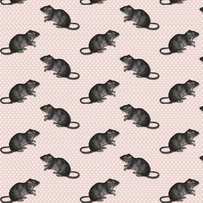 Rats on  white dots pink background 2