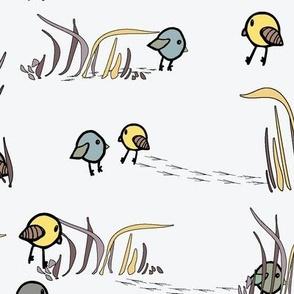 Hidden Birdies ( Spring Forest)