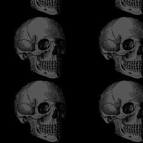 Savvy's Faded Skull Black