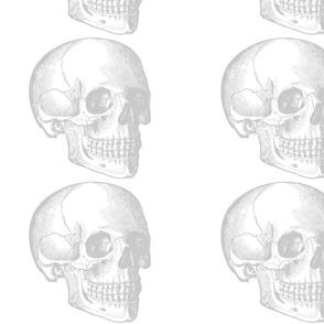 Savvy's Faded Skull White