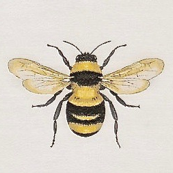 bees large