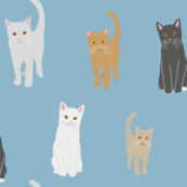 white, gray, brown and red cats pattern