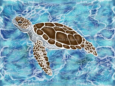Sea turtles #1 by Salzanos