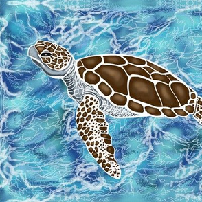 Sea turtles #1swimming by Salzanos