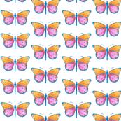 Medium small butterflies, colourful on white || shirt top blouse night gown woman dress fun trendy man men girl kid women