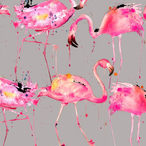 flamingos on gray large scale