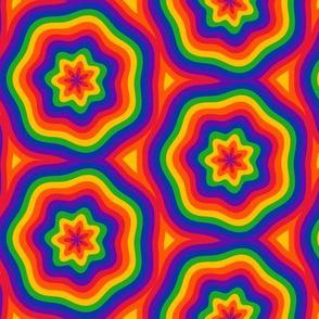 Rainbow Fiesta Flowers
