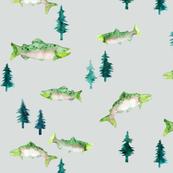 Pacific Northwest Salmon