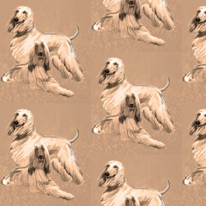 Afghan Hounds in Sepia tones