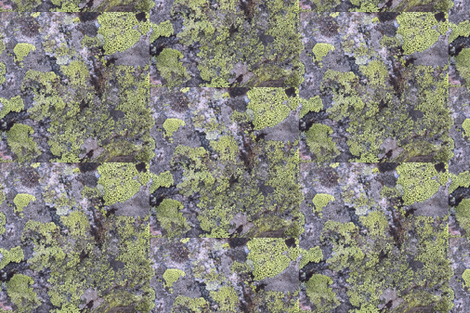 Vail Rock Moss fabric by heffraleigh on Spoonflower - custom fabric