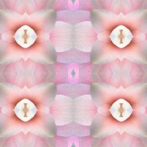 florascope 38
