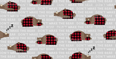 (small scale) don't wake the bear - grey