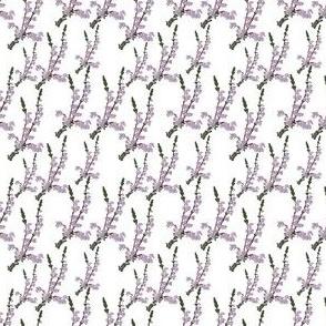 Fresh Snow Flower dark tint Print 2x2