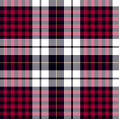 Little clan dress tartan, 12""