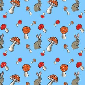 Jackrabbit and mushrooms