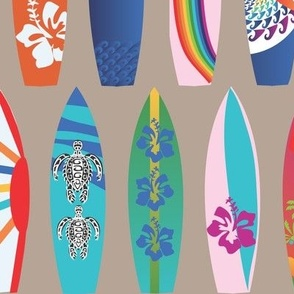 Surf Board Story Boards