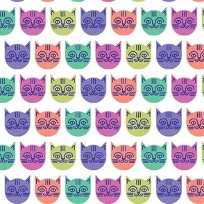 happy cat brights on white