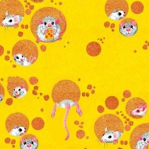Cheese and Mice