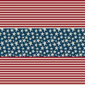 Stars N Stripes 5